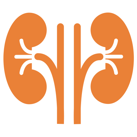 Moolchand | Best Kidney Care & Dialysis hospital | Top Nephrologists | Delhi & Agra, India